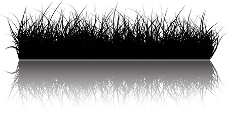 pasturage: Vector grass background with reflections in the water