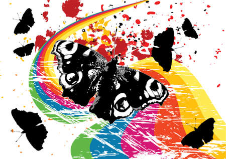 Black and white grunge butterflies on a rainbow photo