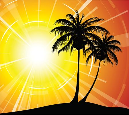 Sunset on the beach - palm trees silhouettes Stock Photo