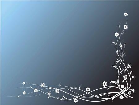 Flowers on blue background photo
