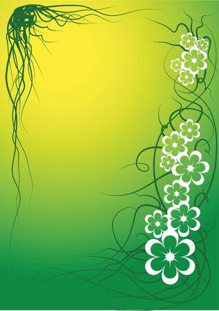 Vector flower frame photo
