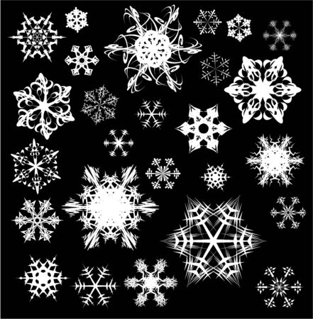 Various snowflakes on black background     photo