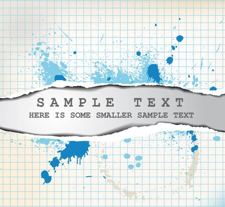 designer labels: Teared paper with place for your text