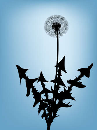 Dandelion silhouette against the blue sky Stock Photo - 4858060