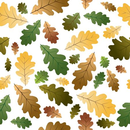 Oak leafs texture - seamless pattern - with white background photo