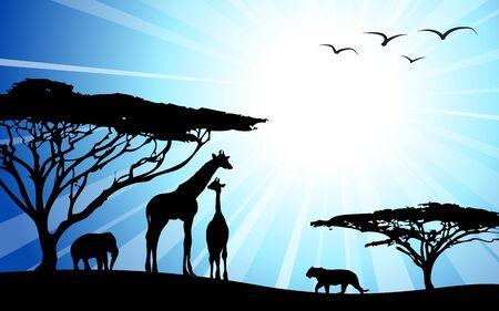 Africa  safari - silhouettes of wild animals in dawn photo