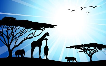 africa safari: Africa  safari - silhouettes of wild animals in dawn