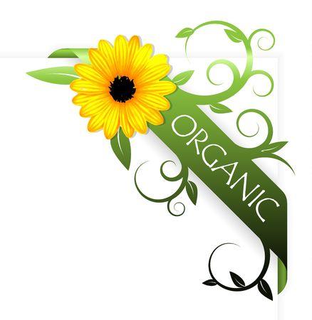 Green corner ribbon for organic product Stock Photo - 5740412