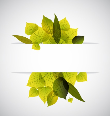 saturate: Spring leafs abstract background with place for your text