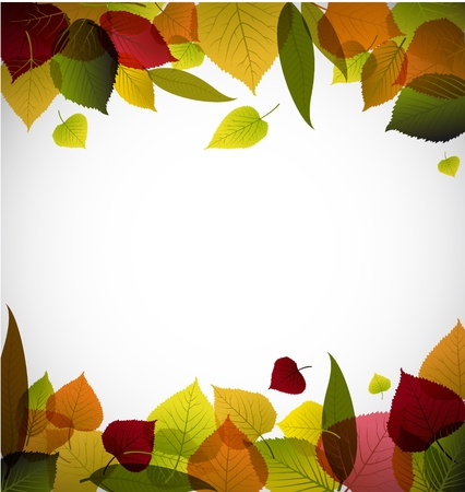 Autumn leafs abstract background with place for your text Stock Vector - 9942176