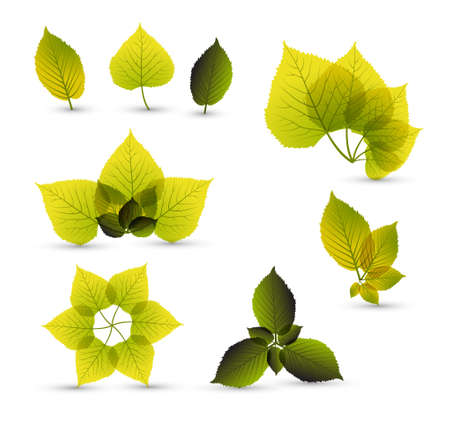 saturate: Fresh abstract leaf elements with nice details