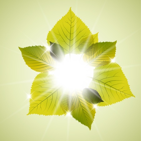 saturate: Spring sunny leafs abstract background with place for your text Illustration