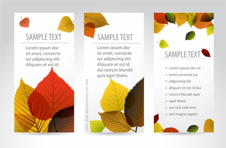 Fresh natural fall vertical banners with leafs and sample text Vector