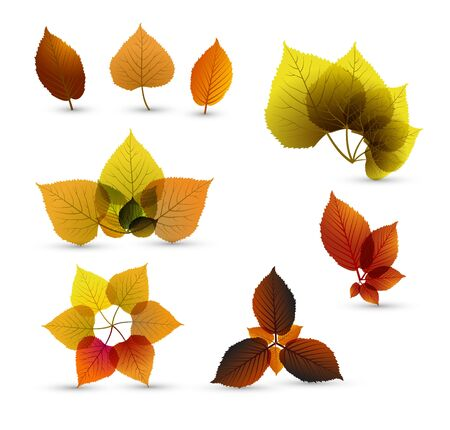 Autumn abstract leaf elements with nice details Stock Vector - 10080245