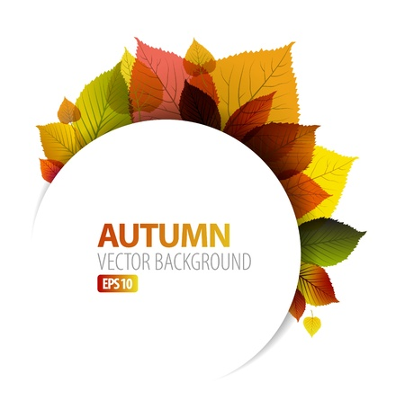autumn background: Autumn abstract floral background with place for your text