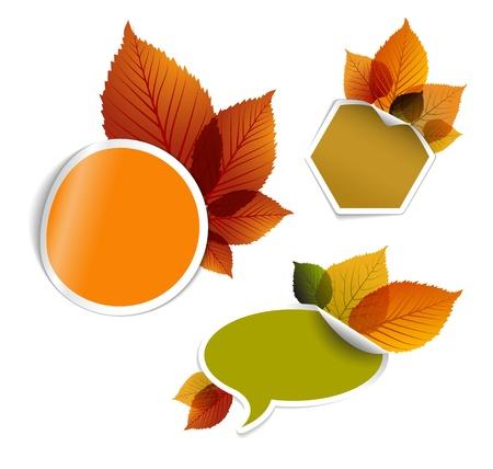 Conjunto de entradas con descuento del otoño, etiquetas, sellos, pegatinas con hojas de colores