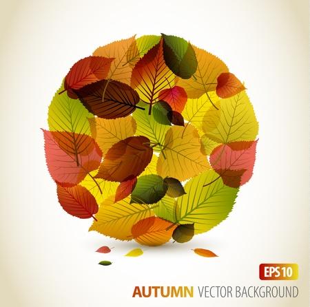 Automne arrière-plan floral abstrait - cercle de coloré leafs avec place pour votre texte Vecteurs