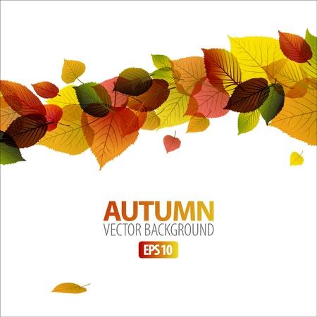 autumn leaf frame: Oto�o abstracto Fondo floral con lugar para el texto