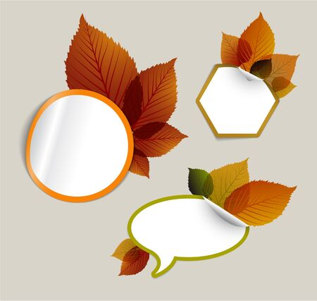 Set of vector autumn discount tickets, labels, stamps, stickers with colorful leafs Vector