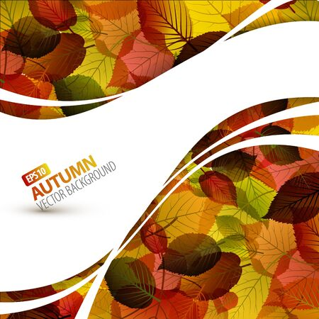 Colorful vector autumn background with place for your text Vector