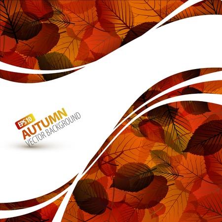 herbstblumen: Bunter Herbst Hintergrund mit Platz f�r Ihren Text Illustration