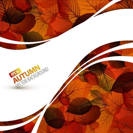 fall border: Colorful autumn background with place for your text