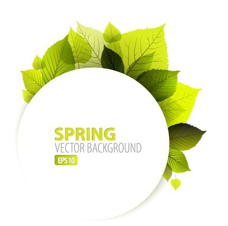 kezdetek: Tavaszi absztrakt virágos háttér helyét a szöveg