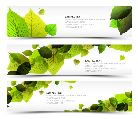 saturate: Vector Fresh spring horizontal banners with leafs and sample text Illustration