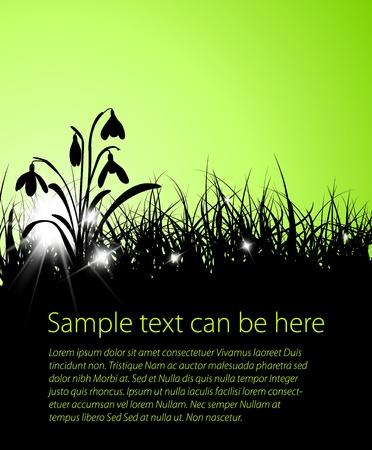 soir�e: Fond de printemps l'herbe vecteur avec la place pour votre texte