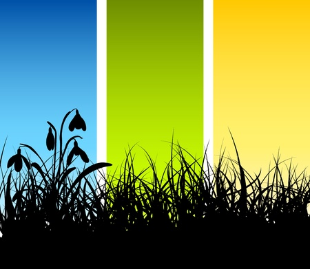 grassy field: Spring vector grass background with place for your text Illustration