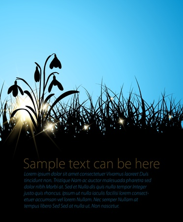Spring vector grass background with place for your text Vector