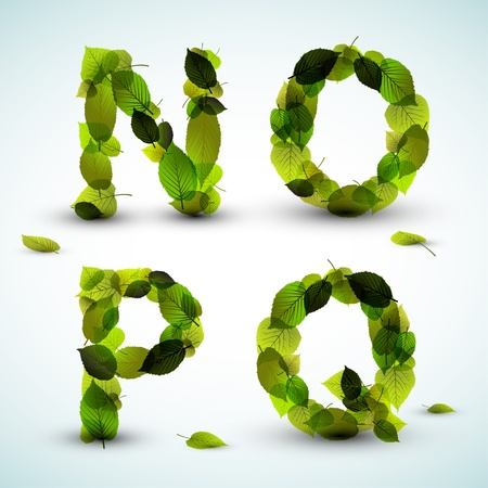 green leaf: Alphabet letters made from fresh green leafs