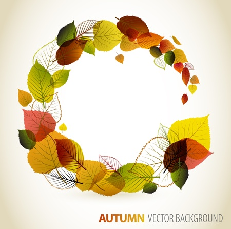 autumn leafs: Autumn abstract floral background - circle from colorful leafs with place for your text Illustration
