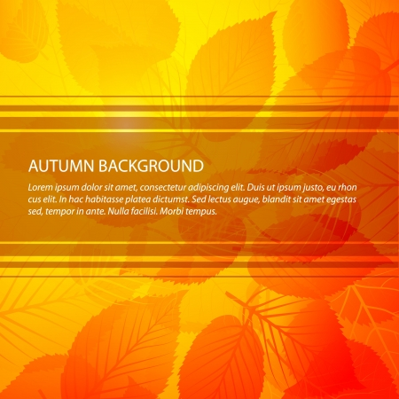 Autumn abstract floral background with place for your text Vector