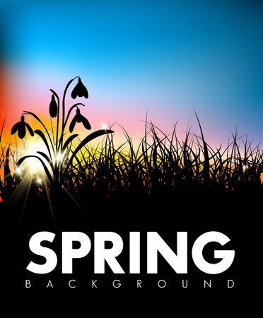 pasturage: Spring vector grass dawn background with place for your text