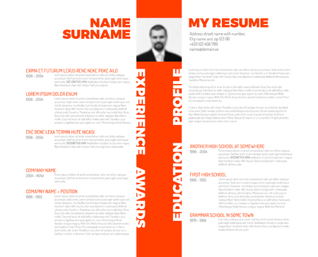 personal profile: minimalist cv  resume template - minimalistic colorful version with photo stripe  in the middle and nice typography Illustration