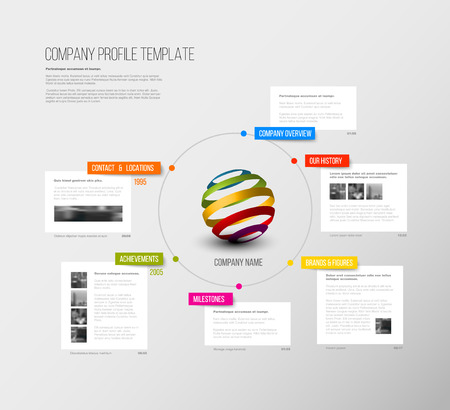 overview: Vector Company infographic overview design template with colorful labels and white blocks