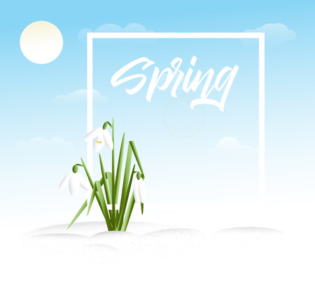 Spring vector grass background with place for your text Illustration