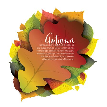 Autumn vector abstract floral background with colorful oak leaf and place for your text