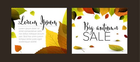 Collection of autumn Inline Medium Rectangle banner templates with fall colored leafs  イラスト・ベクター素材