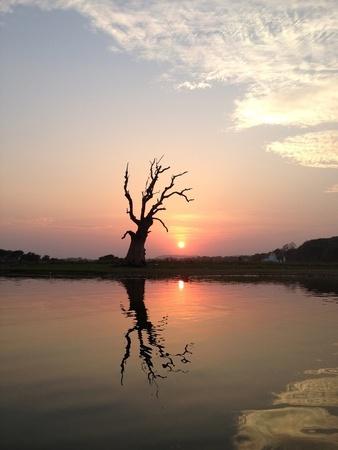 glow: Reflection of tree in river at sunset time Stock Photo