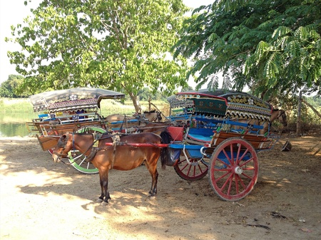 horse drawn carriage: Resting horse drawn carriage, the animal working in ava inwa myanmar Stock Photo