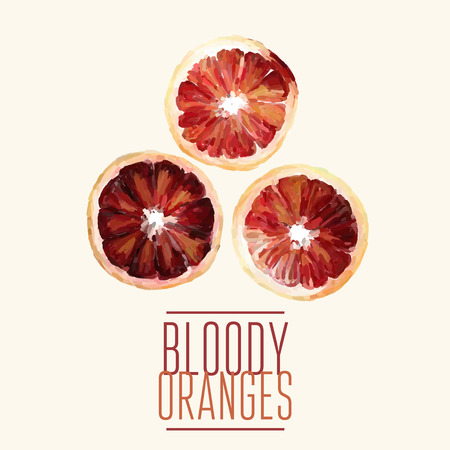 ilustration and painting: Vector bloody oranges