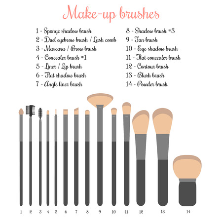 make up fashion: Vector illustration of 14 make-up brushes with names