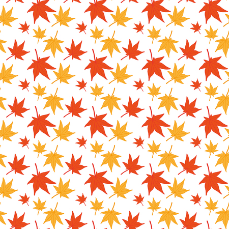 japanese maple: Maple leaves seamless pattern. Japanese maple pattern isolated on white. Falling leaves
