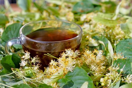 Tilia tea. Tea made from linden flowers. Tea on the table among the linden flowers. Natural curative tea.