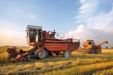 Harvesters in the field. Harvesting combines.