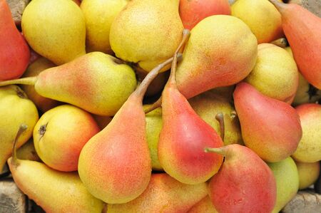 Many yellow red ripe pears.