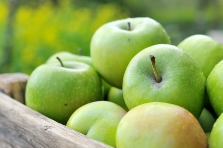 Green apples in a wooden box. Stock Photo - 11365384