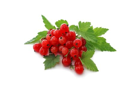 Currant berries. Red currants on a white background.